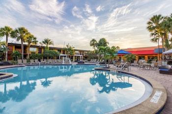 CoCo Key Hotel and Water Resort-Orlando - Orlando, FL 32819 - Pool