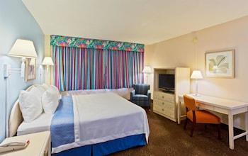 Lexington Hotel - Miami Beach - Miami Beach, FL 33140 - Guestroom