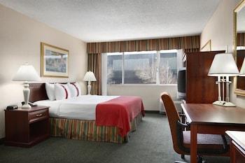 Ramada Plaza Denver Central - Denver, CO 80216 - Guestroom