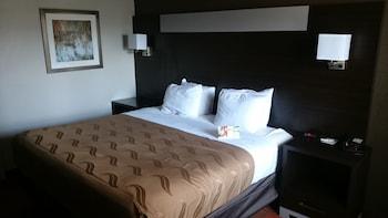 Quality Inn and Suites - Stuttgart, AR 72160 - Guestroom