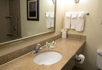 Holiday Inn Hotel & Suites Charleston West