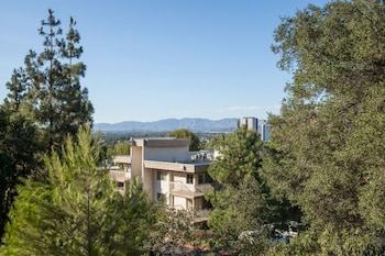 Oakwood at Toluca Hills
