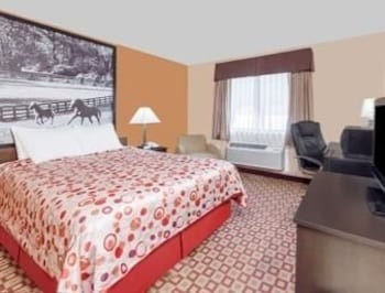 Super 8 Bowling Green South - Bowling Green, KY 42103 - Guestroom