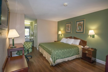 Quality Inn and Suites - Warner Robins, GA 31088 - Guestroom