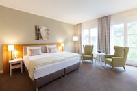 Deluxe Double Room, 1 King Bed, Park View