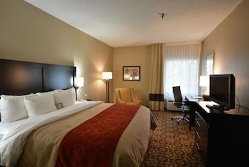 Comfort Inn & Suites - Trussville, AL 35173 - Guestroom