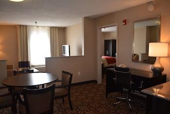 Comfort Inn & Suites - Trussville, AL 35173 - Living Area