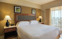 Superior Room (Free 24-Hour Internet Ticket)