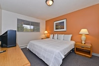 1  Bed Room Suite   (1 King Bed with Sofabed)