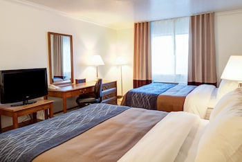 The Paradise Lodge - Paradise, CA 95969 - Guestroom