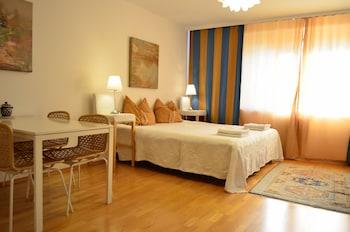 一訪維也納城市生活麗城公寓飯店