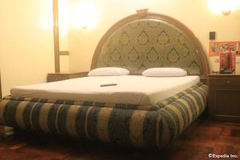 Halina Drive Inn Hotel Pasay Guestroom