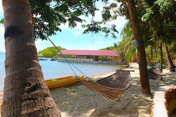 Chindonan Dive Resort Coron Property Grounds