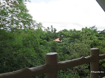 Alexis Cliff Dive Resort Bohol Balcony View