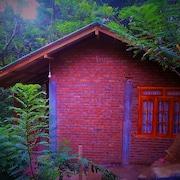 艾拉翠綠小屋飯店