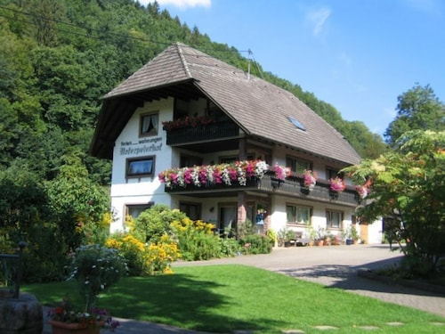 Apt in Bad Peterstal Griesbach 7649 2 Br apts by RedAwning