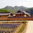 Moji Guest House