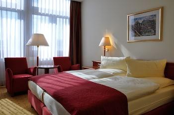 斯坦格利茲國際飯店