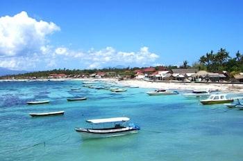 倫邦岸島珊瑚礁平房飯店