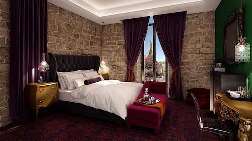 棕色耶路撒冷別墅飯店
