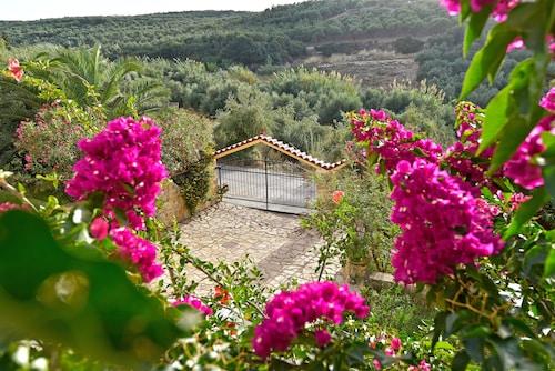 橄欖農場飯店