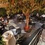 Olivia Plaza Hotel photo 26/41