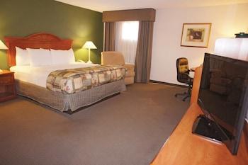La Quinta Inn Bishop-Mammoth Lakes - Bishop, CA 93514 - Guestroom