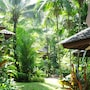 Khao Lak Palm Beach Resort photo 19/28