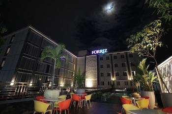 弗瑞茲飯店
