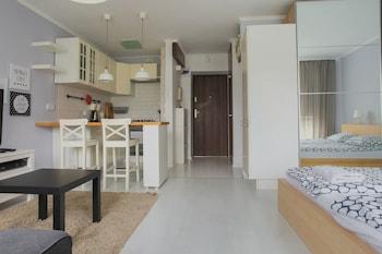 庫魯切沃斯基戈可供 4 人入住 B34 公寓飯店
