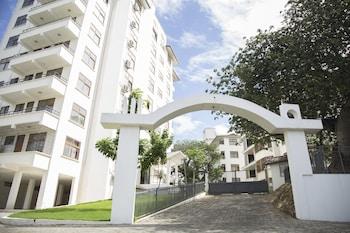 札金猴麵包樹公寓飯店
