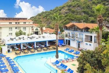 阿登尼斯海灘飯店