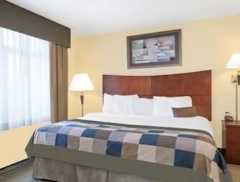 Wingate by Wyndham Lafayette Airport - Lafayette, LA 70508 - Guestroom