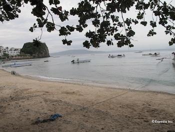 Blue Ribbon Dive Resort Puerto Galera Beach