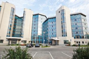謝列梅捷沃機場觀景台飯店