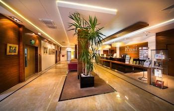 普拉維斯卡酒店