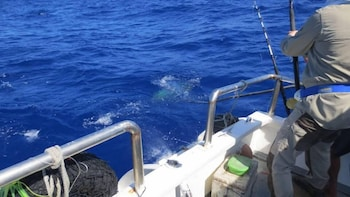 Sailfish Bay Surf & Big Game Fishing Lodge Surigao Del Norte Boating