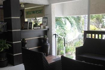 Turtle Inn Resort Boracay Lobby Sitting Area
