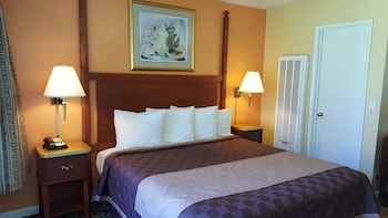 Alpine Inn and Spa - South Lake Tahoe, CA 96150