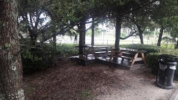 Value Place Homestead - Homestead, FL 33033 - BBQ/Picnic Area