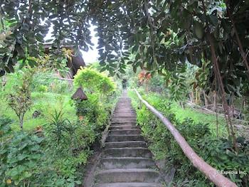 Coco Beach Island Resort Mindoro Property Grounds