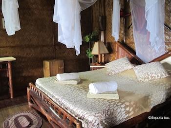 Coco Beach Island Resort Mindoro Guestroom
