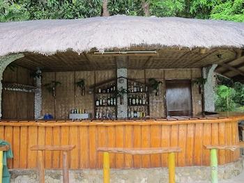 Coco Beach Island Resort Mindoro Hotel Bar