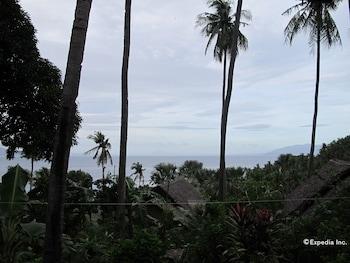 Coco Beach Island Resort Mindoro Garden View