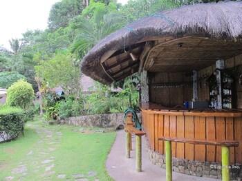 Coco Beach Island Resort Mindoro Poolside Bar