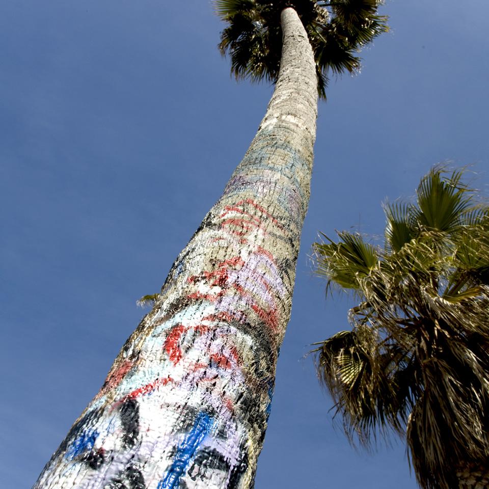 Venice Beach graffiti palm tree