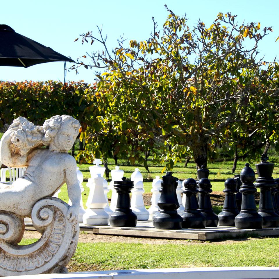 Wild on Waiheke giant chess board
