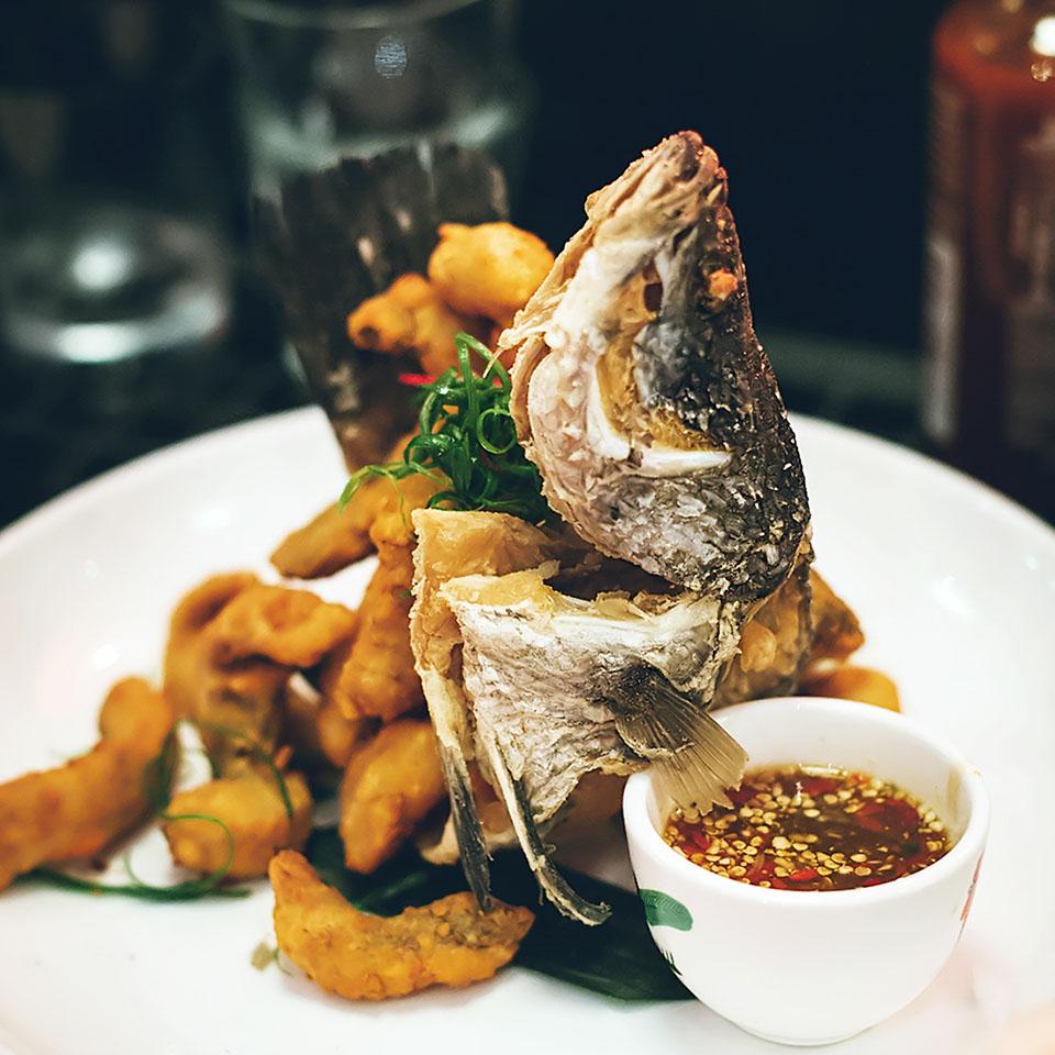 ginlong_fish