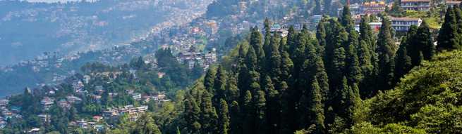 Darjeeling Family Travel