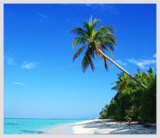 Maldives Island and Beach Holidays | Expedia.co.in